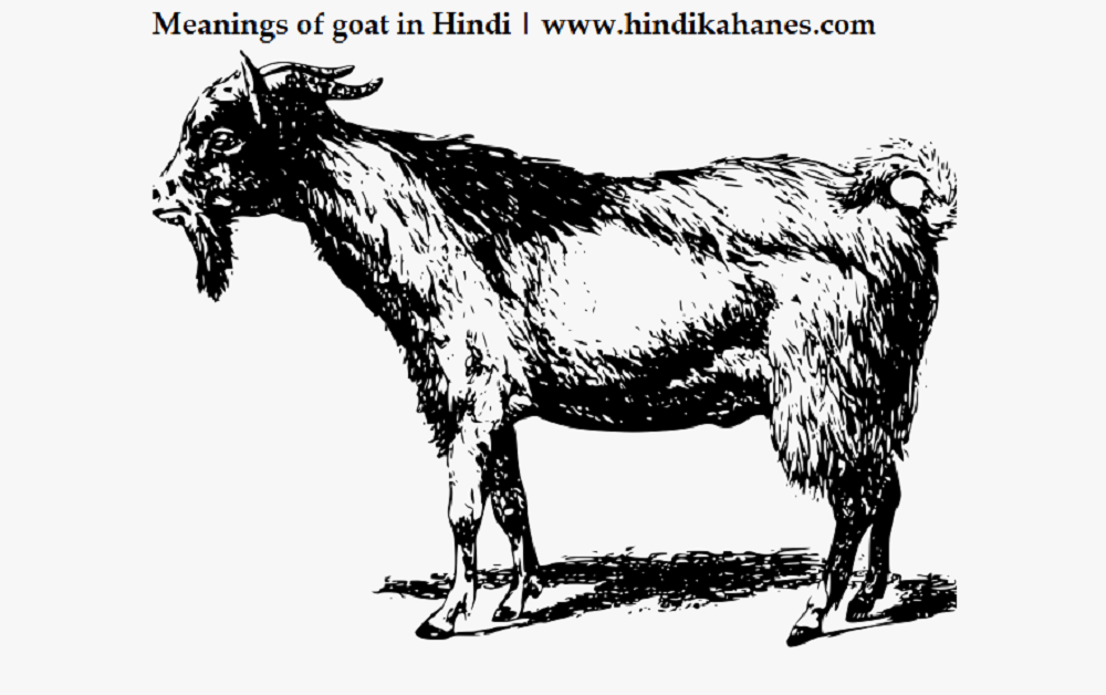 Goat meaning in Hindi